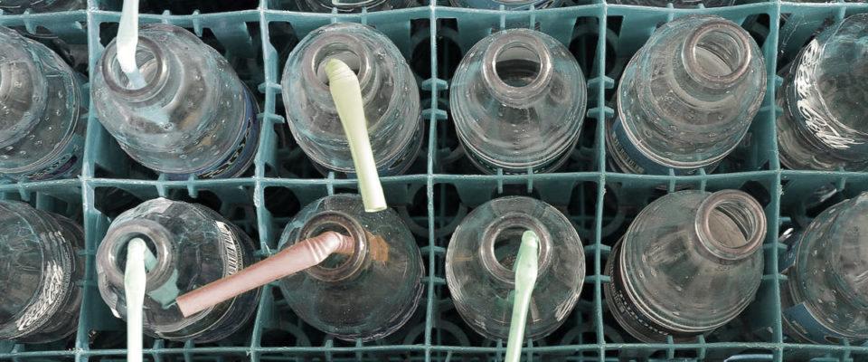 Trink Oase News Getränkekisten schleppen